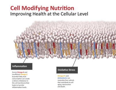 cell modifying nutrition