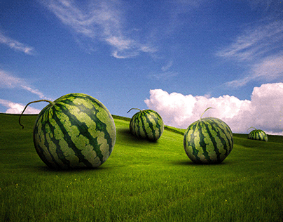 Fat Watermelons
