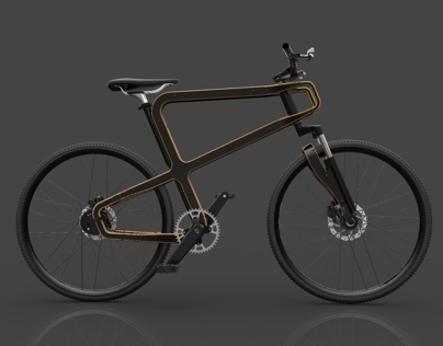 Boske Wooden Bike