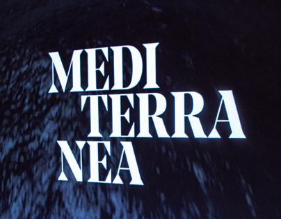 Mediterranea. Visioni di un mare antico e complesso