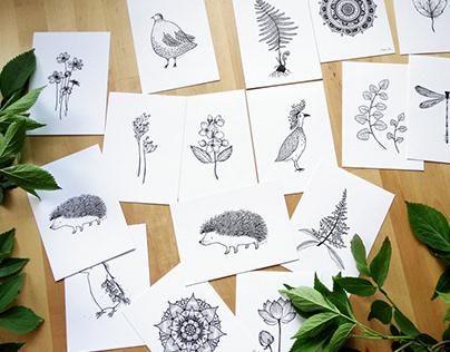 BLACK & WHITE - PLANTS & ANIMALS