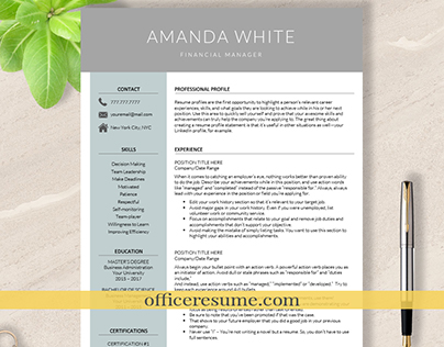 MS Word Apple Pages CV Template