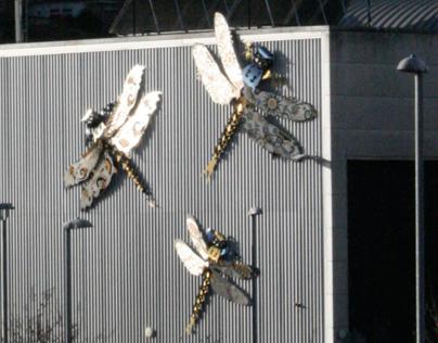 Regency Dragonflies Veolia Brighton