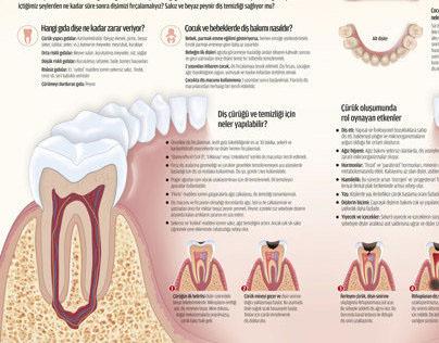 Diş infografik