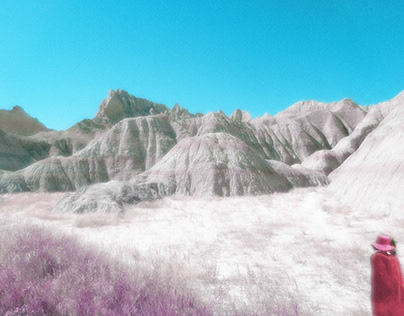 Landscape Installations