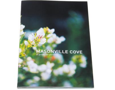 Masonville Cove Systems Design