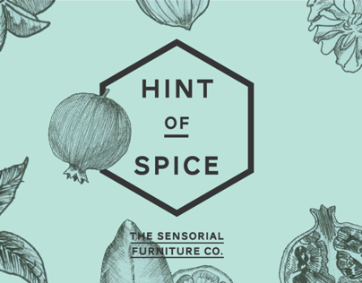 Hint of Spice Furniture Co.
