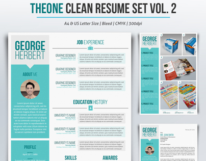 TheOne Clean Resume Set Vol. 2