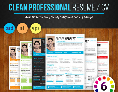 TheOne Clean Resume Set Vol. 1