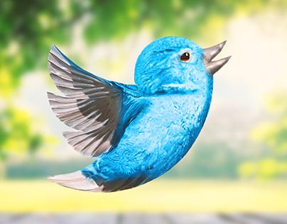 """Real life"" Twitter bird"