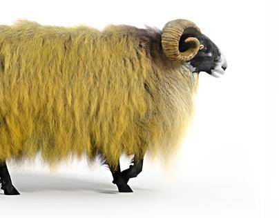 Happy Yellow Sheep Walking 3D