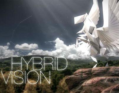 BAXI - Hybrid Vision