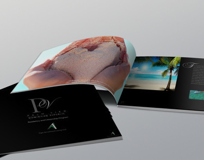 Palm View Residency and Citizenship Brochure