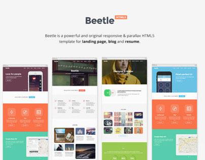 Beetle landing page