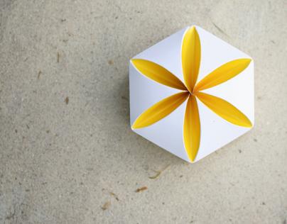 Package design. Invitations