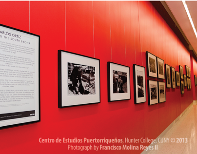 Hunter College Carlos Ortiz Exhibit