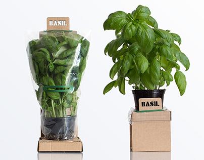 Self-Watering Herbs