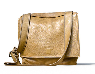 3D. a small leather bag