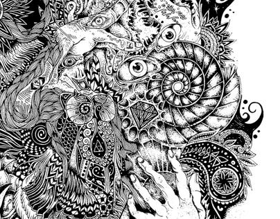 La secuencia de Fibonacci estilo Monsterbird C.A.V