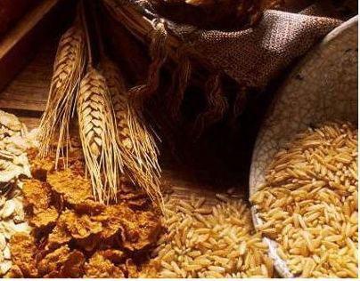 Link-Lock packs, Eco-Friendly Packaging for Food Grains