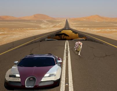 Bugatti Veyron vs Cheetah