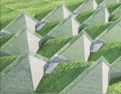 green housing estate