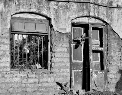Window. Wisdom.