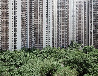 Hong Kong | Urban Jungle