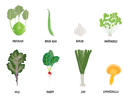 Vegetable Illustrations for Part and Parcel