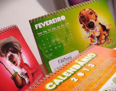 Calendário Rotaract / Apasfa 2013