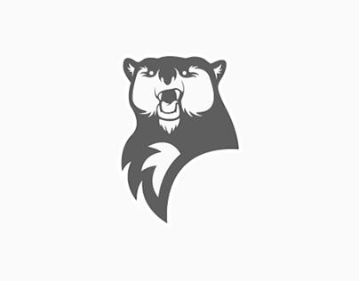 Grimsby Ice Bears