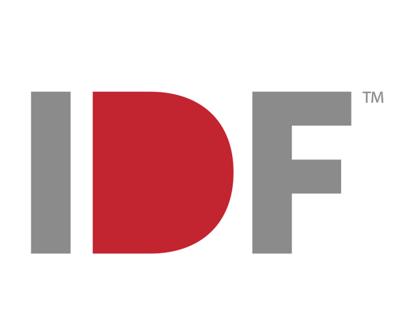 India Design Forum 2013