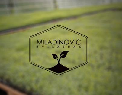 Miladinovic rasadnik / nursery garden