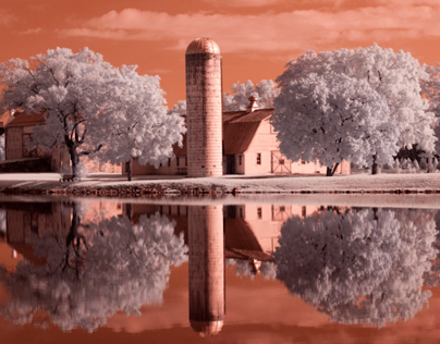 Infrared Farm