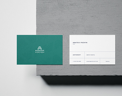 AnyforSoft   Brand Identity