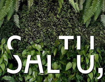 Saltu, Design Management