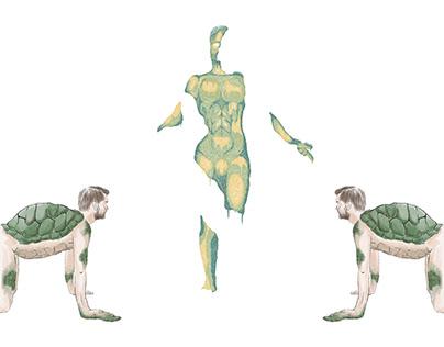Illustrations / Patterns