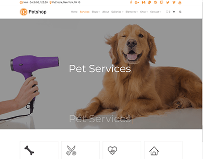 Services Page - Petshop WordPress Theme