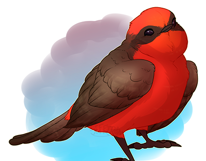 Decembird Drawing Prompts