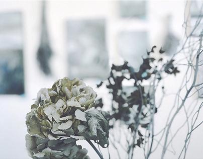 """Solo Exhibition """"Blue & White"""""""