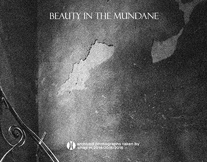Beauty in the Mundane