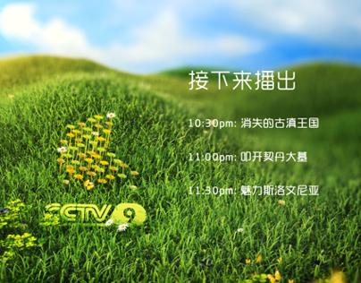 2014 CCTV_9 清明节背景版