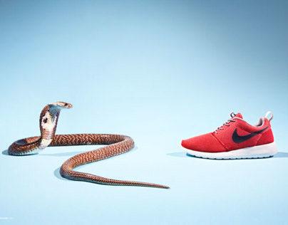 'Endangered' for Sneakers Magazine