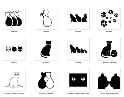Semiotics: Cat