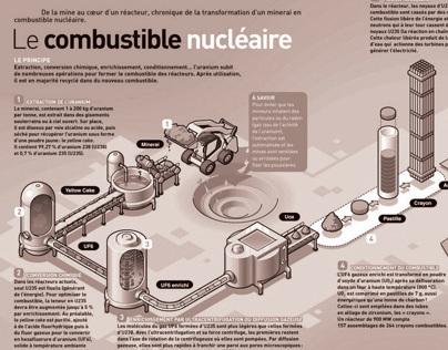 Infographics (Process)