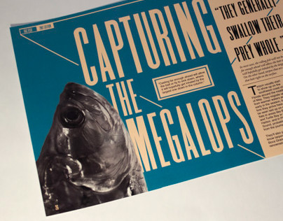 Capturing the Megalops
