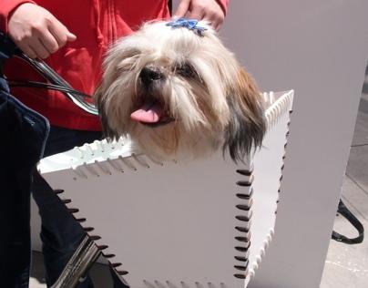 Proyecto  El Arca : traslada a tu perro en bicicleta.