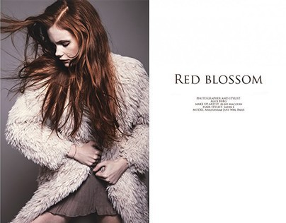 Red blossom for Neverland Magazine