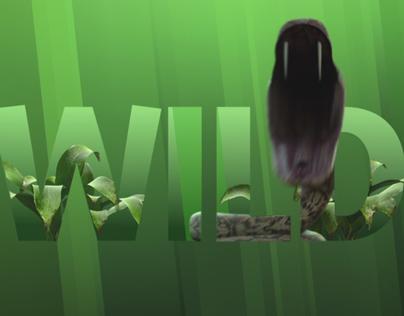 NatGeo WILD - branding refresh