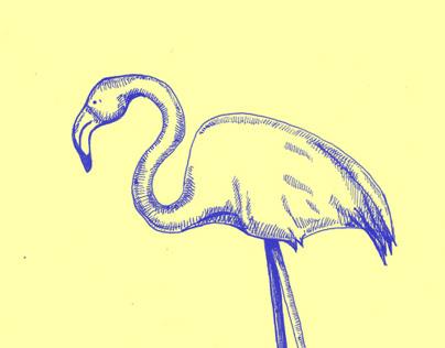 doodle-zoo
